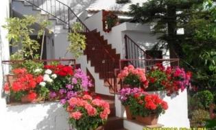 2 Notti in Casa Vacanze a Piedimonte Etneo